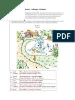 10 Cosas Que Identifican a Un Parque en Inglés