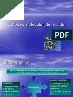 La_base_molecular_de_la_vida_1.ppt