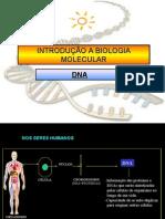 DNA revisado