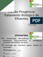 Apresentação Química Tratamento Biológico.pptx