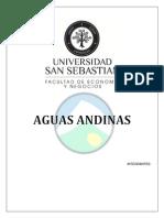 Trabajo Final Contabilidad II Aguas Andinas