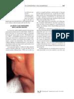 La boca y los maxilares en el recien nacido.pdf