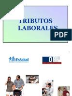 Tributos Laborales