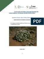 1 d Adages Et Rituals Relatifs a Les Plantes Medicinales Maroc SIPAM