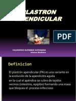 plastronapendicular-111226171611-phpapp02