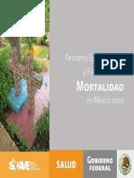 Panorama epidemiológico y estadístico de la mortalidad en México