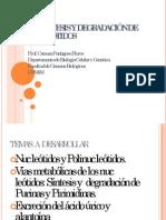 Clase Nucleótidos 2014.1