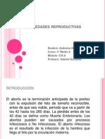 Enfermedades Reproductivas Andreina Hernandez 6.6