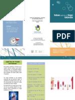 triptico_s1act1.pdf