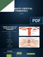 Expo Histologia (Aparato Genital Femenino)