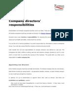 Company directors' responsibilities