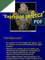 Expresion del material genetico