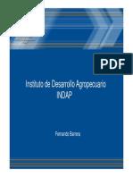 Banco PDF 21 Presentacion Indap.