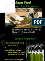 Project Algae Fuel