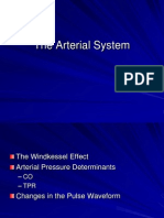 3 - The Arterial System