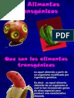 Alimentos Trasgenicos Ramirez Danielaacevedo Deysi 1221926269522670 8