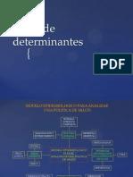 Taller de Determinantes (2)