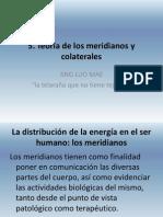 aproximacion-al-estudio-meridianos-acupuntura.pdf
