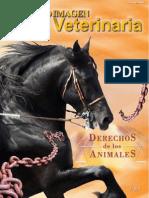 Derechos de Los Animales