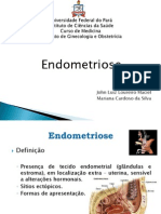 Endometriose (2)