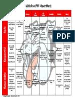 pbis matrix 6-10-14