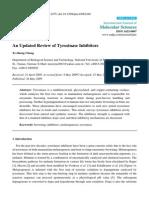 Review on Tyrosinase Inhibitors
