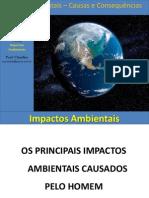 Impactosambientais Causaseconsequncias 140527230908 Phpapp02