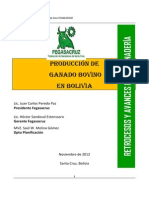 Produccion de Ganado Bovino en Bolivia