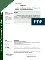 Studies on Homosporous Ferns From Kashmir Himalayas - I Taxonomy of Ophioglossum Vulgatum (Ophioglossaceae)