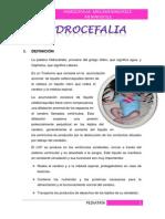 Hidrocefalia Normotensiva Ebook Download