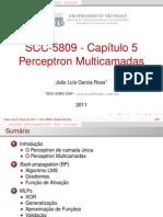 SCC5809Cap5-V2