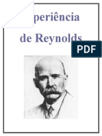 Relatório Reynolds