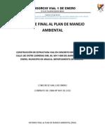 Informe Final p.m.a.1_enerodocx