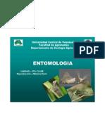 Entomologia- I Unidad - 6ta Clase