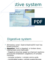 Chapter 5 Digestive System-P.P