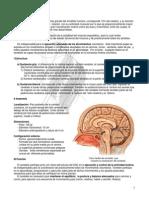 Notas Cerebro