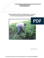 Manual de Poduccion de Chia Salvia Hispanica