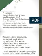 Variação Linguística 31 07 2014