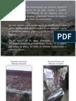 La Economía Del Municipio Arismendi. Word 2003