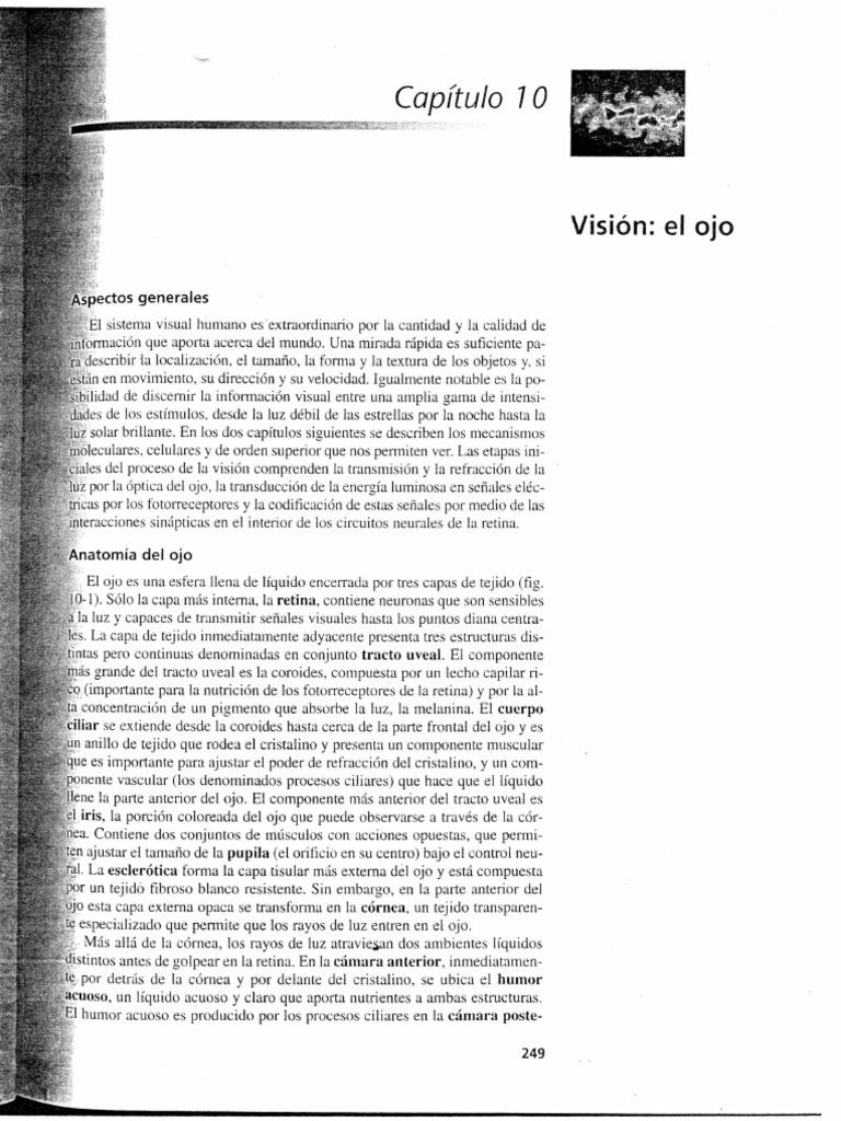 Contemporáneo Anatomía Y Fisiología Humana Libro Para Colorear ...