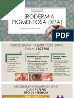 Xerodermia Pigmentosa (Xpa)