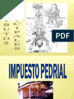 TRIBUTOS MUNICIPALES.ppt