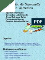 Salmonella en Alimentos Eq2