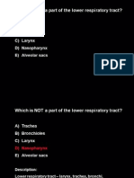 Respiratory Practice Questions