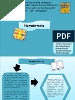 Presentacion de Homositosis.jpg