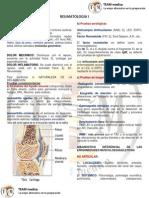 Manual Reumatologia i