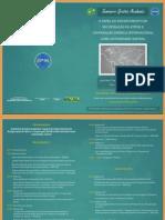 Grotius_Academia_mar_2013_Folder (programação) (1).pdf