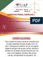 Delitos de Violacion de La Libertad Sexual_71264