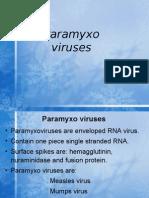 Paramyxovirus lec