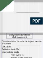 D. latum,Echinococcus & trematodes